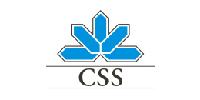 logo_css-100